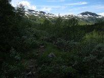 Henjadalen-Friksdal-014