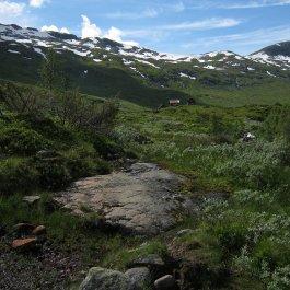 Henjadalen-Friksdal-017