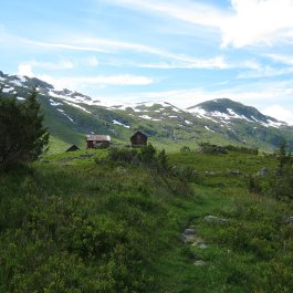 Henjadalen-Friksdal-019