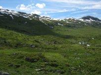 Henjadalen-Friksdal-031