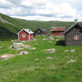 Henjadalen-Friksdal-036