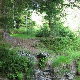Henjadalen-Nyastøl-014