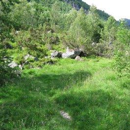 Henjadalen-Nyastøl-019