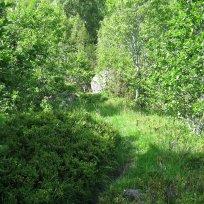 Henjadalen-Nyastøl-024