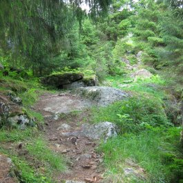 Henjadalen-Nyastøl-029