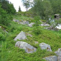 Henjadalen-Nyastøl-033