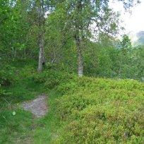 Henjadalen-Nyastøl-035