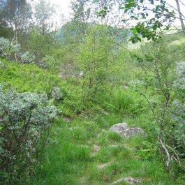 Henjadalen-Nyastøl-041