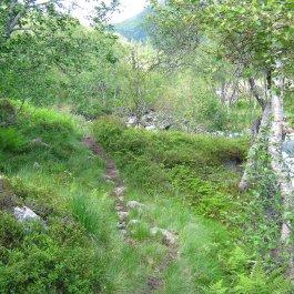 Henjadalen-Nyastøl-043