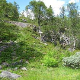Henjadalen-Nyastøl-046