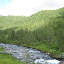 Henjadalen-Nyastøl-048