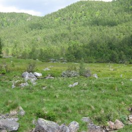 Henjadalen-Nyastøl-059