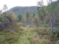 Henjadalen-Åsenosi-016