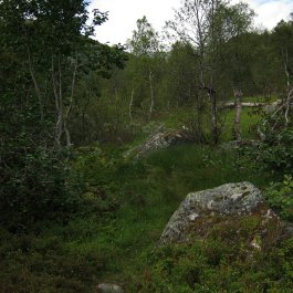 Henjadalen-Åsenosi-023