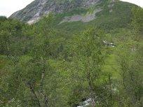 Henjadalen-Åsenosi-031