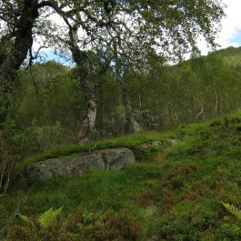 Henjadalen-Åsenosi-041