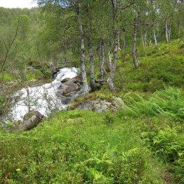 Henjadalen-Åsenosi-045