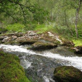 Henjadalen-Åsenosi-046