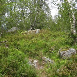 Henjadalen-Åsenosi-050