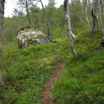 Henjadalen-Åsenosi-058