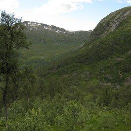 Henjadalen-Åsenosi-060