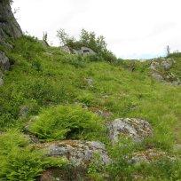 Henjadalen-Åsenosi-064