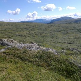 Henjadalen-Åsenosi-069