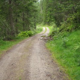 Huksdalen-031