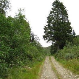Huksdalen-061