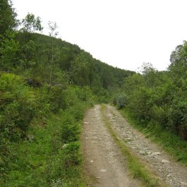 Huksdalen-064
