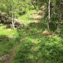 Utsiktspunkt nær Kyrafossen 003