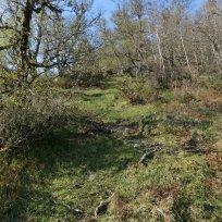 Utsiktspunkt nær Kyrafossen 006