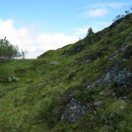 Bergsete frå Njøs 030