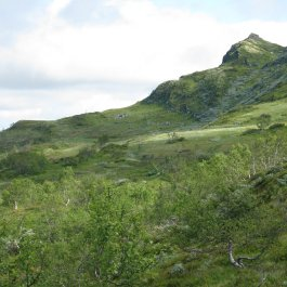 Bergsete frå Njøs 032