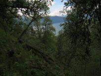 Bergsete opp Kvannskar-014