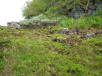 Bergsete opp Kvannskar-019