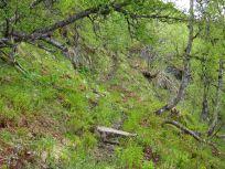 Bergsete opp Kvannskar-024