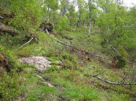 Bergsete opp Kvannskar-025