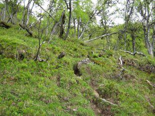 Bergsete opp Kvannskar-026