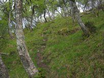 Bergsete opp Kvannskar-029