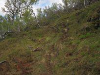 Bergsete opp Kvannskar-033