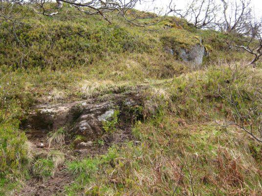 Bergsete opp Kvannskar-035