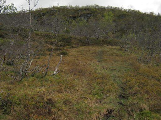 Bergsete opp Kvannskar-037