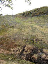 Bergsete opp Kvannskar-038