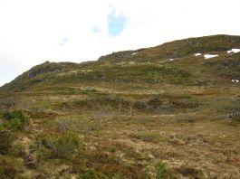 Bergsete opp Kvannskar-044