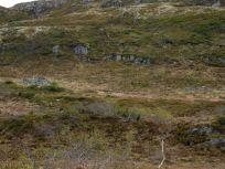 Bergsete opp Kvannskar-045