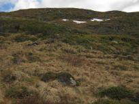 Bergsete opp Kvannskar-048