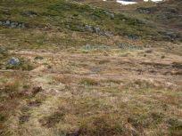 Bergsete opp Kvannskar-049