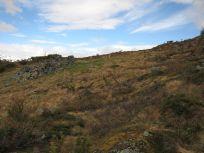 Bergsete opp Kvannskar-050