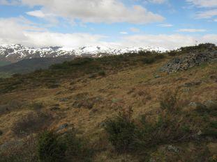 Bergsete opp Kvannskar-051
